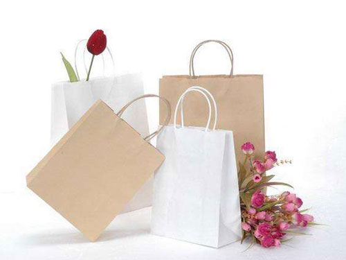 Paper bag as a shopping bag